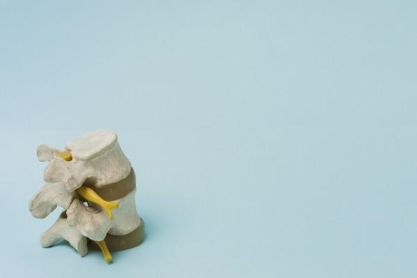 schuessler salze bei osteoporose